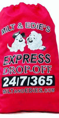 Express_service_dryclean_bag_burbank
